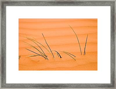 Coral Pink Sands 1 Framed Print by Adam Romanowicz