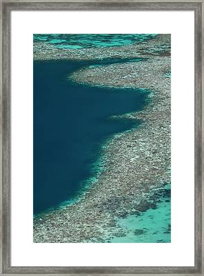 Coral Reef In Shallow Water Framed Print by Scubazoo