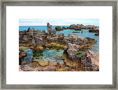 Coral Reef Outcrops In Bermuda Framed Print by Charline Xia