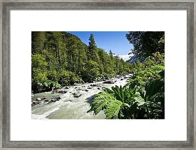 Corcovado National Park Framed Print by Philippe Psaila