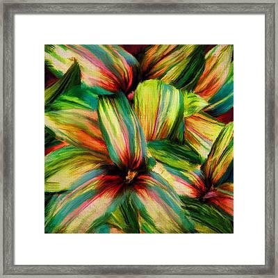 Cordyline Framed Print by Lourry Legarde