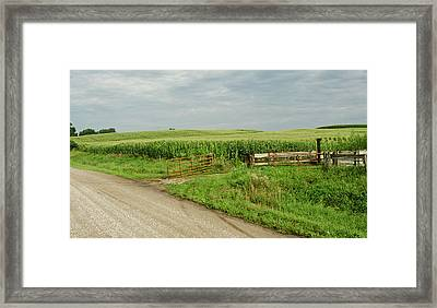 Corn Clouds Sun Rusty Gate Framed Print by Wilma  Birdwell