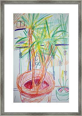 Corn Plant On Balcony Framed Print by Anita Dale Livaditis