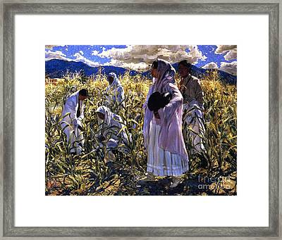 Cornfield In Taos Framed Print by Pg Reproductions