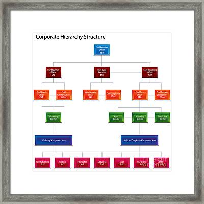 Corporate Hierarchy Structure Chart Framed Print by John Takai