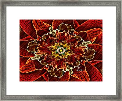 Corsage Framed Print by Janet Russell