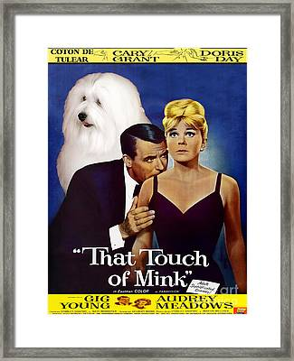 Coton De Tulear Art -that Touch Of Mink Movie Poster Framed Print by Sandra Sij