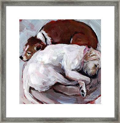 Cottonball Framed Print by Molly Poole