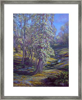 Cottonwoods Framed Print by Charles Smith