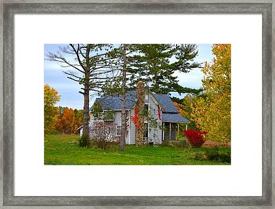 Country Cottage Framed Print by Julie Dant