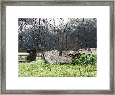 Country Diamonds Framed Print by Pamela Patch