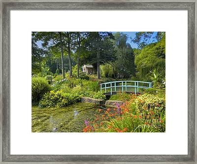 Country Garden Framed Print by Darren Wilkes