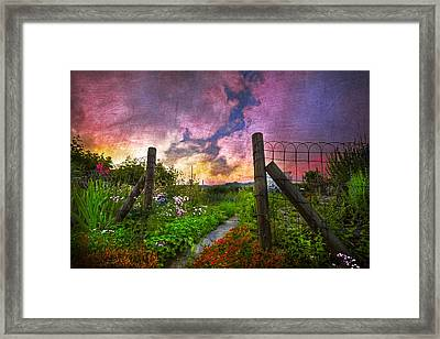 Country Garden Framed Print by Debra and Dave Vanderlaan