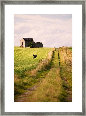 Country Lane Framed Print by Amanda Elwell