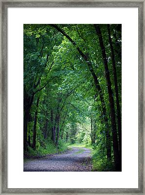 Country Lane Framed Print by Cricket Hackmann