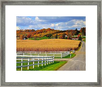 Country Lane Framed Print by Frozen in Time Fine Art Photography