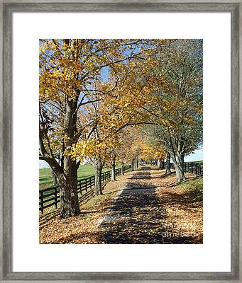 Country Lane Framed Print by Roger Potts