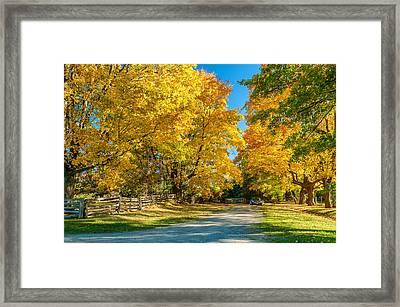 Country Lane Framed Print by Steve Harrington