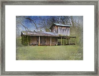 Country Life Framed Print by Betty LaRue