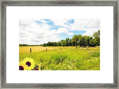 Country Life. Framed Print by Kelly Nelson