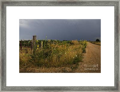 Country Road Framed Print by Dennis Hedberg