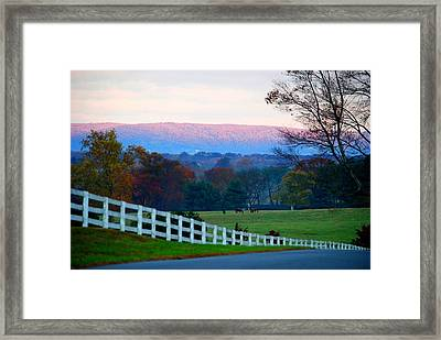 Country Road Framed Print by Susana Struve