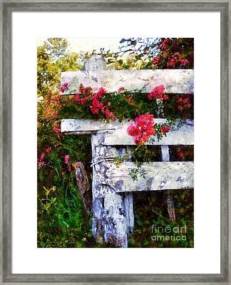 Country Rose On A Fence 2 Framed Print by Janine Riley