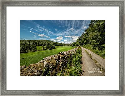 Countryside Lane Framed Print by Adrian Evans