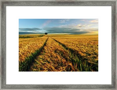 Countryside Framed Print by Piotr Krol (bax)
