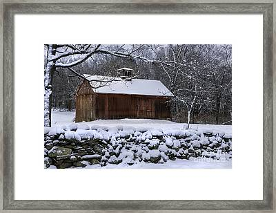 Countryside Treasures Framed Print by Thomas Schoeller