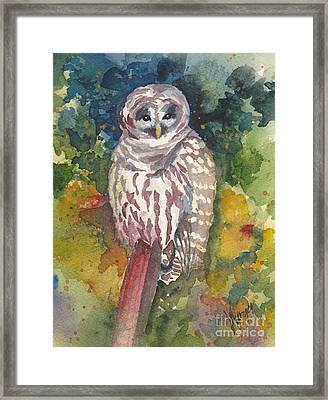 Coupeville Barred Owl Framed Print by Judi Nyerges