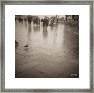 Couple Walking In The Rain San Marco Framed Print by Beverly Brown