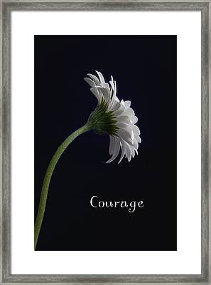 Courage Framed Print by Kim Andelkovic