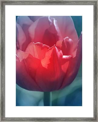 Courage Framed Print by  The Art Of Marilyn Ridoutt-Greene