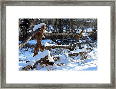 Covered In Snow Framed Print by Fiona Kennard