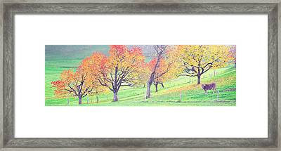 Cow Cantone Zug Switzerland Framed Print by Panoramic Images