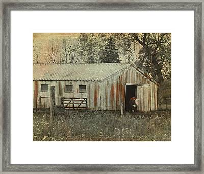 Cow Framed Print by Gothicolors Donna Snyder