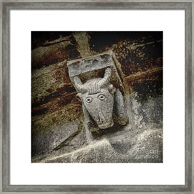 Cow Representation Framed Print by Bernard Jaubert