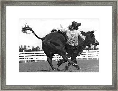 Cowboy Falling  From Bull Framed Print by Underwood Archives