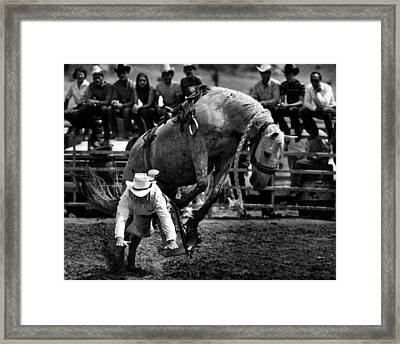 Cowboy Gets Bucked Off Framed Print by Retro Images Archive