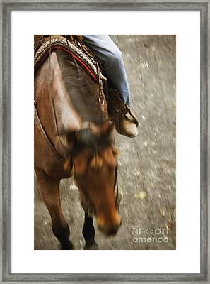Cowboy Framed Print by Margie Hurwich