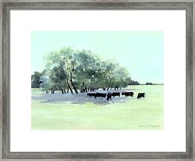 Cows 7 Framed Print by J Reifsnyder