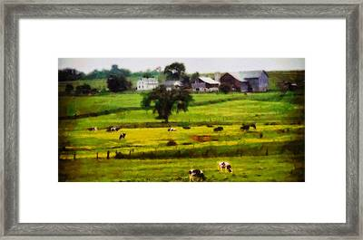 Cows On The Farm Framed Print by Dan Sproul
