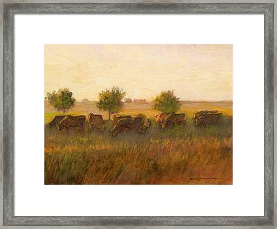Cows1 Framed Print by J Reifsnyder