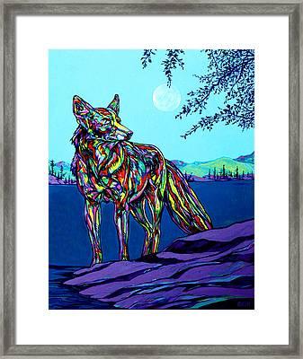 Coyote Framed Print by Derrick Higgins