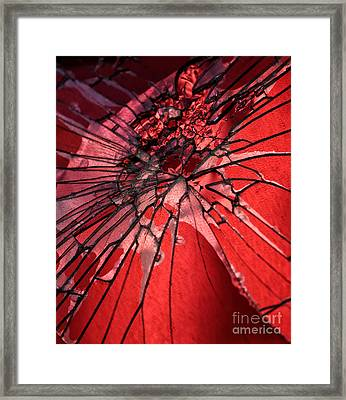 Cracked But Not Broken Framed Print by John Rizzuto