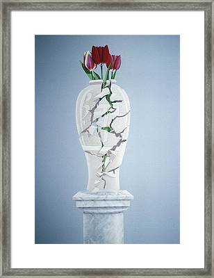 Cracked Urn Framed Print by Lincoln Seligman