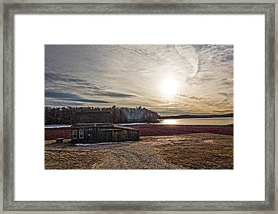 Cranberry Bog Winter Of 2012 Framed Print by Frank Winters