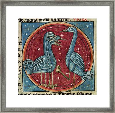 Crane On Watch With A Pebble Framed Print by British Library