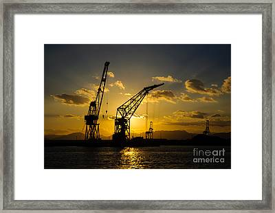 Cranes In The Sunset Framed Print by David Hill